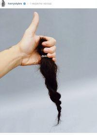 Гарри рассказал, что обрезал волосы, поделившись снимком в интернете